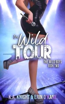The Wild Tour Ebook
